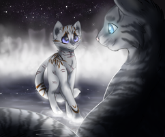 AT - Dreamfeather's Medicine Cat Ceremony by Feline-Basilisk