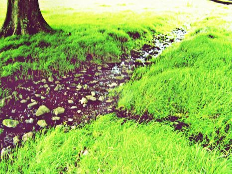Streams of Green. by TheArts-Are-MyLife
