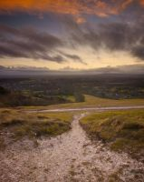 Reigate Hill by andy1349