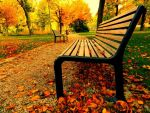 Unfold your wings of autumn freedom by FredyHannover