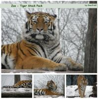 Zoo - Tiger Pack by Gwathiell