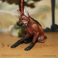 Maned wolf 1 by metazoe