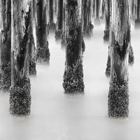 Pismo Pier Posts by Durdenyr