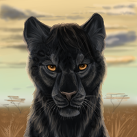 Panter by Interu-Bernhard