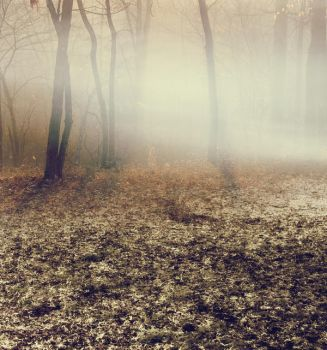 Premade BG 004 by Shadowelement-Stock