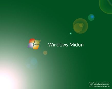 Windows Midori Concept Wall by Dogincorp