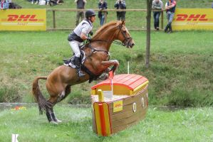3DE Cross Country Water Obstacle Series XV/7 by LuDa-Stock