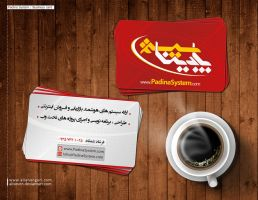 Padina System Business card by aliseven