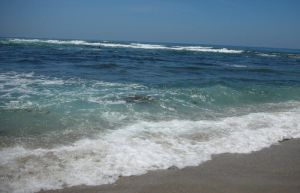 La Jolla Cove -- shoreline by azndlish