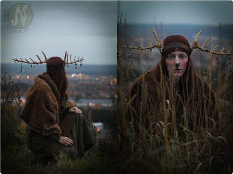 Wooden Shaman Antlers #3 by Nymla