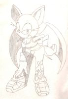 Rouge the bat 2x by Blackwind06