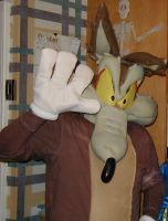 Wile E. Coyote Halloween '07 by WileE2005