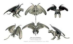 Blackwing spread model sheet by MIKECORRIERO