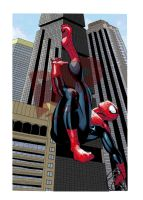 Spider-Man 2014 Colours by RadPencils