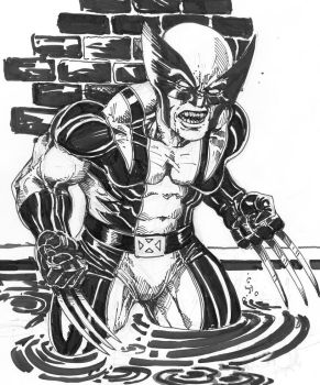 Wolverine My Turn by PM-Graphix