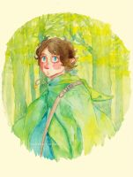Baggins by merrinou