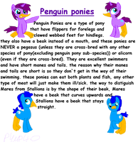 Penguin Ponies species ref by piplup40