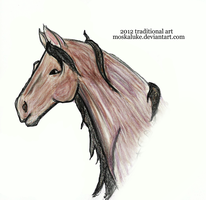1st Attempt Drawing: Horse Head by Moskaluke