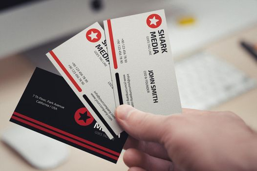 Simple Business Card by reddes