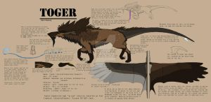 Toger 2012 Reference Sheet by SoldierToger