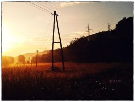 Morning by KeiPaA
