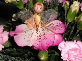 Orchid Fairy by sicktwistedfork