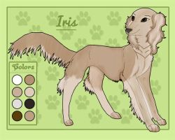 Iris reference sheet by Lyd2000