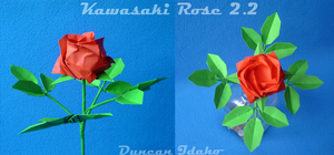 Kawasaki Rose 2.2 by xduncanidahox