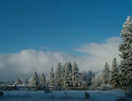 Winter 6 scenics by Pairastocks