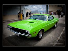 Dodge Challenger-2 by Colin-LOCP