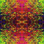 nature's infinite masquerade by PsychedelicTreasures