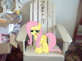 Fluttershy is protecting  my chair by FunnyGamer95