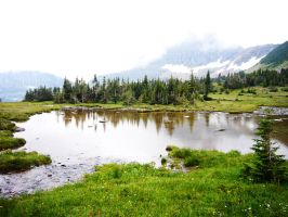 A Pond by the Mountains by QuantumInferno