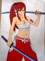 Erza Scarlet by Hdomi