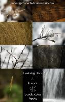 Curiosity Pack by lindowyn-stock