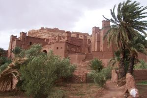 Rock the Kasbah by 100-days