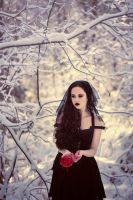 White as snow, red as blood by DarkVenusPersephonae