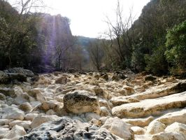 Dry river by Betagalactosidase