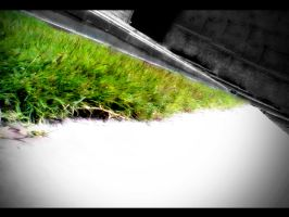 green grass,gray wall by veeradesigns