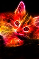Fractal Kitten by minimoo64