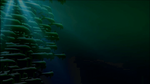 Sardine (Fish) Swarm 3D Animation by Akhdanhyder