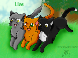 .::Warriors - Live::. by darkaquastar