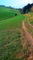 Take the long way home by patrickjobst