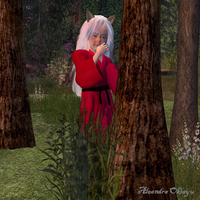 Young Inuyasha by inadreamworld