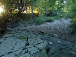 River Bed by sketchydreamerstock
