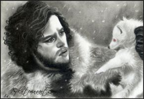 Jon snow and Ghost (wolf ) by Katerina-Art