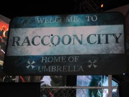 Welcome To Raccoon City by TASmith