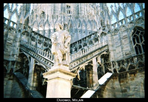 Patron of the Duomo by mossi-mo
