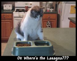 Ok where's the lasagna?? by Granny-Chobit