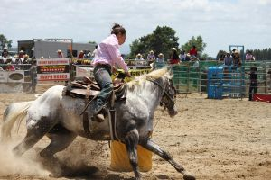 Taupo Rodeo 200 by Sooty-Bunnie